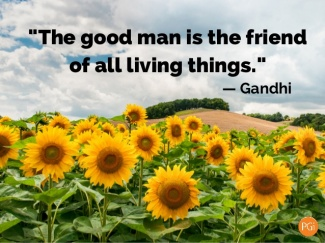 a good man is a friend of all living things