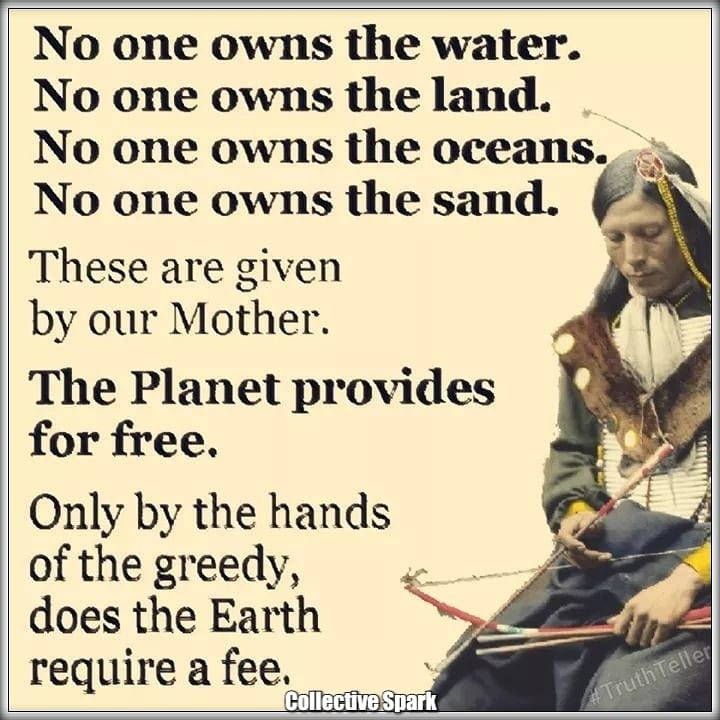 no one owns the earth everything is free